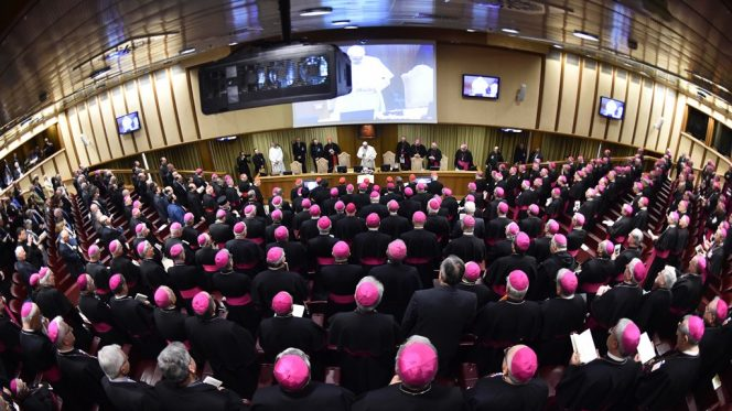 Papa Francesco assemblea generale